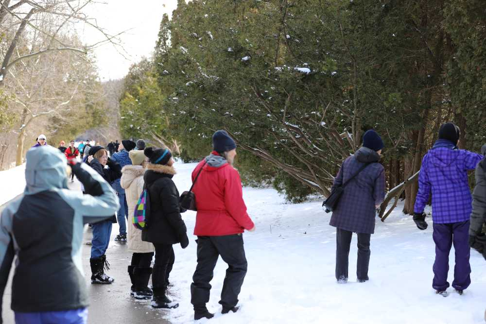 Nature London Members Looking for Chickadees